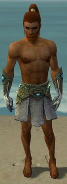 Paragon Monument Armor M gray arms legs front