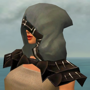 File:Dervish Primeval Armor F gray head side.jpg