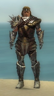 File:Warrior Deldrimor Armor M gray front.jpg
