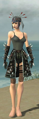 File:Necromancer Elite Canthan Armor F gray arms legs front.jpg