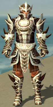 Warrior Monument Armor M dyed front