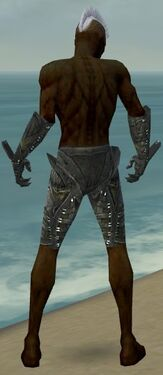 Necromancer Necrotic Armor M gray arms legs back