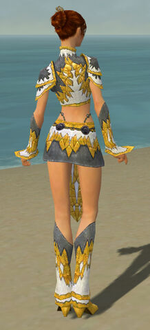 File:Elementalist Iceforged Armor F dyed back.jpg