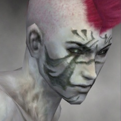 File:Necromancer Elite Kurzick Armor M gray head side.jpg