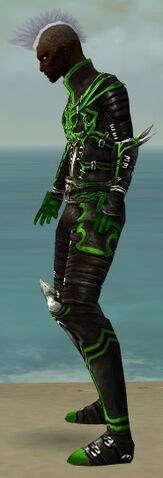 File:Necromancer Shing Jea Armor M dyed side.jpg