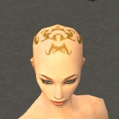 File:Monk Ancient Armor F dyed head front.jpg