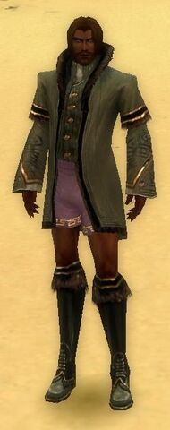 File:Mesmer Norn Armor M gray chest feet front.jpg