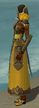 Dervish Asuran Armor F dyed side