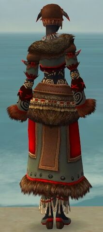 File:Ritualist Norn Armor F gray back.jpg