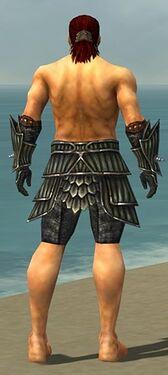 Warrior Wyvern Armor M gray arms legs back