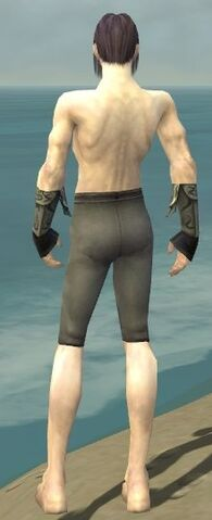 File:Elementalist Monument Armor M gray arms legs back.jpg