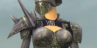 Warrior Platemail armor