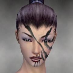 File:Necromancer Asuran Armor F gray head front.jpg