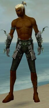 Assassin Elite Luxon Armor M gray arms legs front