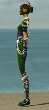 Assassin Norn Armor F dyed side