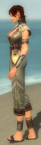 File:Monk Asuran Armor F gray side.jpg