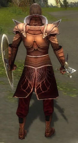 File:General Morgahn Mysterious Armor Back.jpg