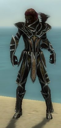 File:Necromancer Elite Sunspear Armor M dyed front.jpg