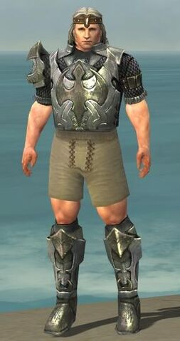 File:Warrior Elite Templar Armor M gray chest feet front.jpg