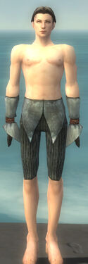 Elementalist Ancient Armor M gray arms legs front
