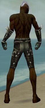 Necromancer Shing Jea Armor M gray arms legs back