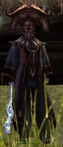Kurzick Priest
