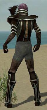 Necromancer Elite Sunspear Armor M gray chest feet back