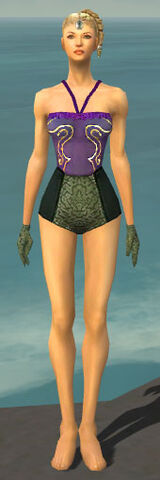 File:Mesmer Shing Jea Armor F gray arms legs front.jpg