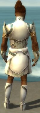 Paragon Asuran Armor M gray back