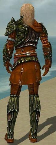 File:Ranger Elite Luxon Armor M dyed back.jpg