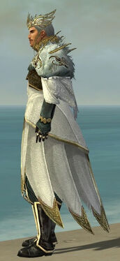 Dwayna's Regalia M default side