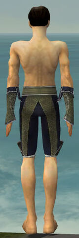 File:Elementalist Canthan Armor M gray arms legs back.jpg