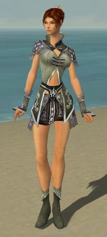File:Elementalist Shing Jea Armor F gray front.jpg