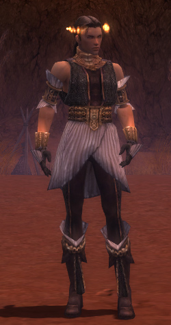 File:Elementalist Elite Sunspear Armor M gray front.jpg