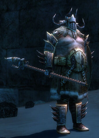 File:Norn Guard Captain.jpg
