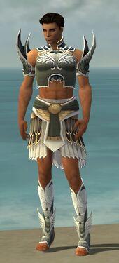 Paragon Deldrimor Armor M gray front