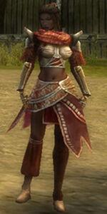Margrid Armor Starter Front