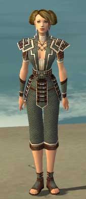 File:Monk Elite Judge Armor F gray front.jpg