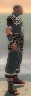 Monk Elite Judge Armor M gray side
