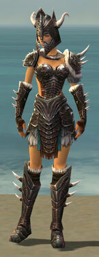 Warrior Norn Armor F gray front