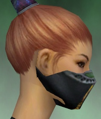 File:Assassin Exotic Armor F dyed head side.jpg