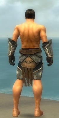 File:Warrior Sunspear Armor M gray arms legs back.jpg