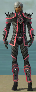 Elementalist Obsidian Armor M dyed front
