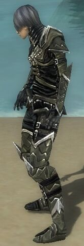 File:Necromancer Elite Profane Armor M gray side.jpg