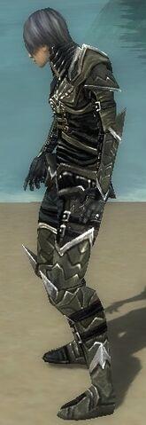 File:Necromancer Elite Profane Armor M gray side.jpg