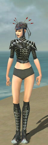 File:Necromancer Fanatic Armor F gray chest feet front.jpg