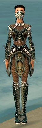 File:Ranger Kurzick Armor F gray front.jpg