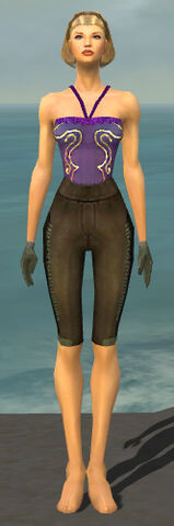 File:Mesmer Istani Armor F gray arms legs front.jpg