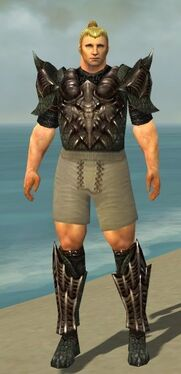 Warrior Elite Dragon Armor M gray chest feet front