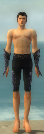 File:Elementalist Ascended Aeromancer's M gray arms legs front.jpg